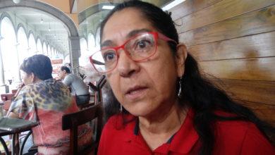 Photo of Critica Regidora declaraciones de Fernández Garibay; son mentiras