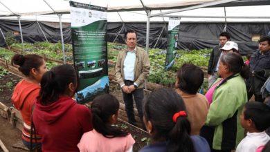Photo of Inicia Gobernador programa de reforestación en Las Vigas