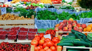 Photo of Crece comercio agroalimentario México-EU