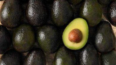 Photo of Aguacate llega a $80 el kilo en mercados del país