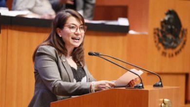 Photo of Piden senadores informe de producción y distribución de libros de texto