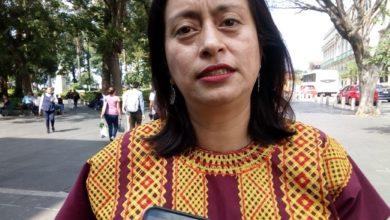 Photo of Ante recortes, autoridades estatales no deben dejar de «combatir» la Violencia de Género