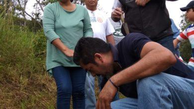 Photo of Ciudadanía y Gobierno deben trabajar en materia de reforestación