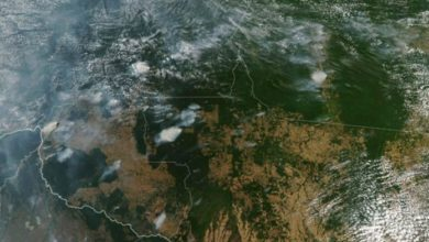 Photo of Chile inicia coordinación en Sudamérica de ayuda a la Amazonia