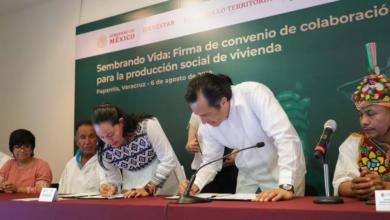 Photo of Bienestar y Gobierno beneficiarán con viviendas a 50 comunidades