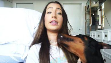 Photo of Youtuber agrede a su perro en video