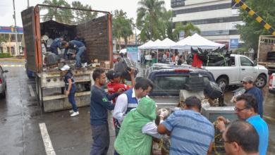 Photo of Colectan más de 30 toneladas de residuos en Reciclón y Llantatón