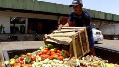 Photo of Preocupante, incremento de desperdicio de alimentos en México