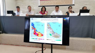 Photo of Registran sequía en 202 municipios; en 11 la situación en grave