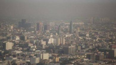 Photo of México podría dejar de contribuir a deterioro ambiental: Monreal