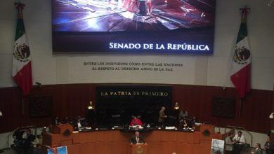 Photo of Piden en el Senado mayor presupuesto para atender problemas de la niñez