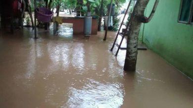 Photo of Se está aplicando seguro catastrófico en campos inundados