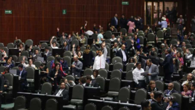 Photo of Frenan en Cámara de Diputados  el «outsourcing»