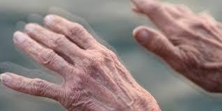 Photo of Bacteria intestinal retrasaría aparición del Parkinson