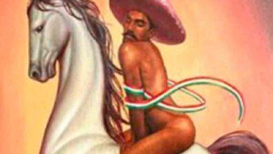 Photo of Nieto de Zapata considera denigrante ser gay