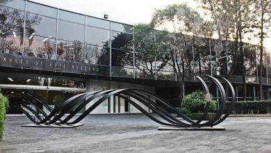 Photo of Museo de Arte Moderno ofrecerá 14 exposiciones en 2020
