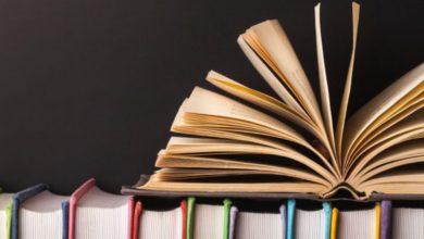 Photo of ¿Cuál es el estado de la literatura?