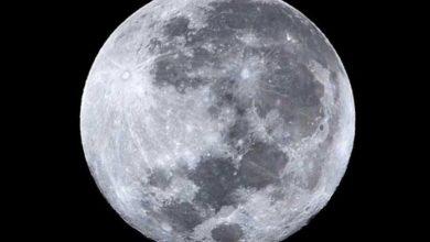 Photo of Llega la Luna Vieja o Luna llena del Lobo
