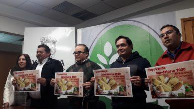 Photo of Anuncian Expoventa Candelaria con amplia variedad de tamales