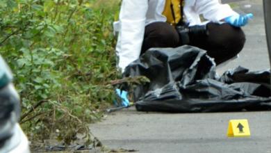 Photo of Busca Fiscalía CDMX a nuevo titular que investigue feminicidios