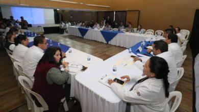 Photo of Instalan Subcomité Jurisdiccional para combatir dengue, zika y chikungunya
