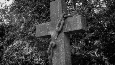 Photo of Legionarios de Cristo, una congregación podrida: víctima