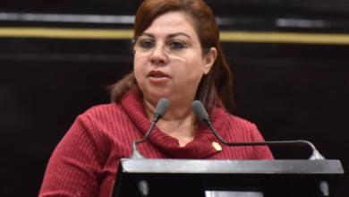 Photo of Llama Diputada a la Unidad, al Diálogo y a la Fraternidad por Veracruz