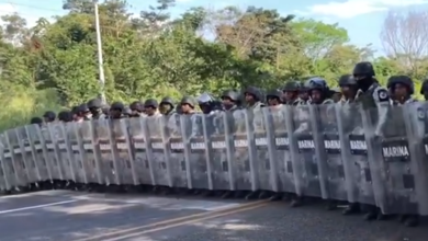Photo of Gobierno, irresponsable e insensible con migrantes: PRI Veracruz