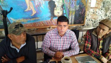 Photo of Buscarán combatir la tala ilegal de árboles en Xalapa