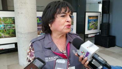 Photo of Los pro-vida no tienen argumentos, solo gritan: activista