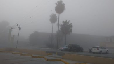Photo of Neblina causa retraso de vuelos en Aeropuerto de Tijuana