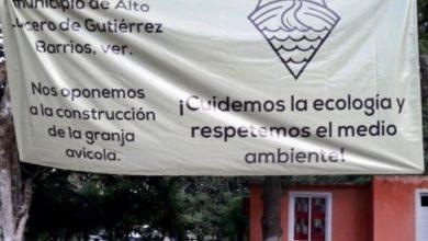 Photo of Pilgrims no cuenta con permiso para construir granjas avícolas