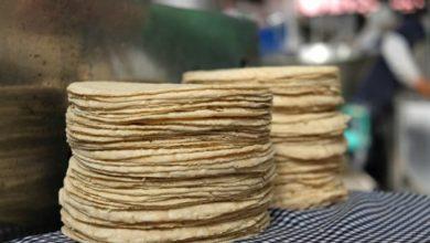 Photo of Garantiza Profeco estabilidad en precio de la tortilla en todo el país