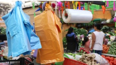 Photo of Xalapa le dice adiós a las bolsas de plástico
