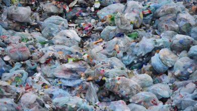 Photo of Intensificarán operativos para evitar bolsas de plástico