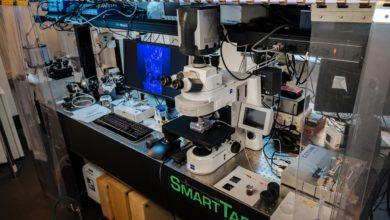 Photo of Inteligencia artificial para optimizar el uso de recursos naturales