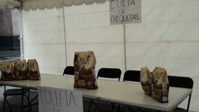 Photo of Realizan colecta de croquetas para animales de albergues