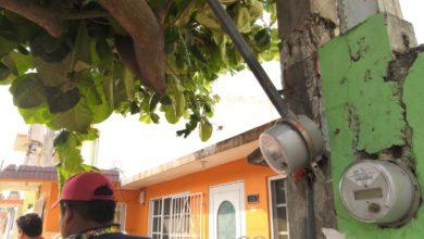 Photo of Paso de carros alegóricos deja sin luz a vecinos de Playa Linda