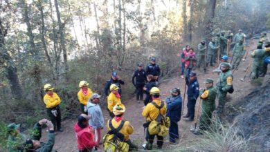 Photo of Incendio forestal en Perote está bien controlado