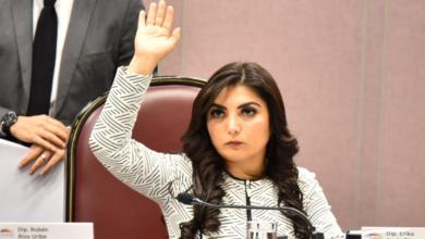 Photo of Buscan fortalecer representatividad en decisiones del Congreso