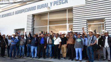 Photo of Naranjeros toman la Sedarpa; piden pago de seguro catastrófico