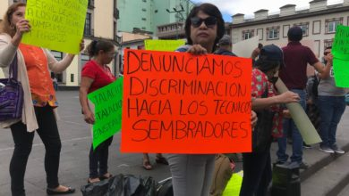 Photo of Denuncian nepotismo en Sedesol