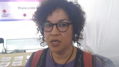 Photo of Línea Violeta ha dado buenos resultados en Xalapa: Yadira Hidalgo
