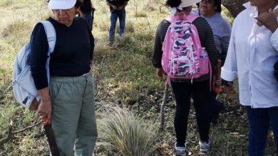 Photo of Hallan más restos humanos en fosas de Alvarado