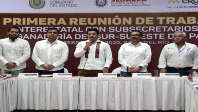 Photo of Veracruz y estados del sureste en coordinación para enfrentar el abigeato