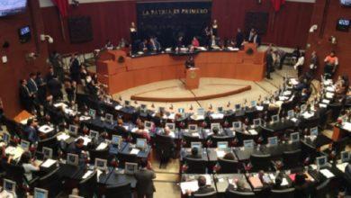 Photo of Senado implementara estrategias para aumentar número de donadores de Médula Ósea