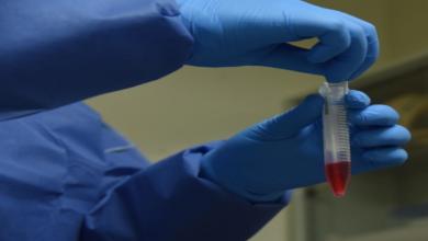 Photo of Veracruz se suma al protocolo de mitigación contra el coronavirus