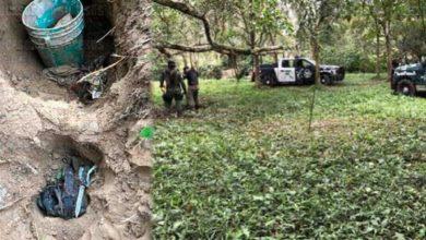 Photo of Desconocen cantidad de cuerpos hallados en fosa clandestina de Playa Vicente