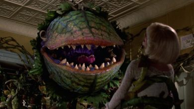 "Photo of Chris Evans podría protagonizar remake de ""Little Shop of Horrors"""