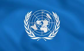 Photo of ONU le pide a Nueva Zelanda solucionar su crisis de vivienda